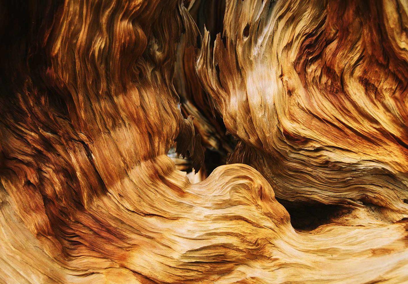 Cuando la pasión por la madera...